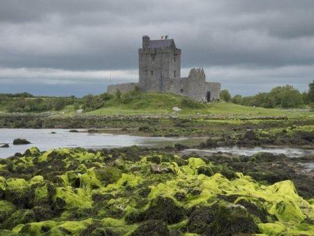 Dunguaire Castle - Castle Tours Ireland