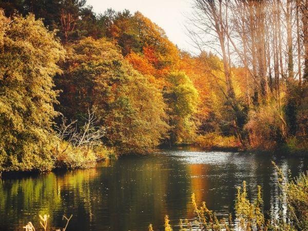 Belfast Northern Ireland Autumn Bucket List