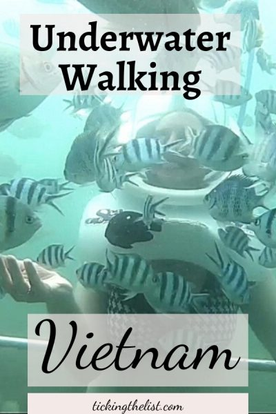 Pin It - Underwater Walking with Seatrek Vietnam
