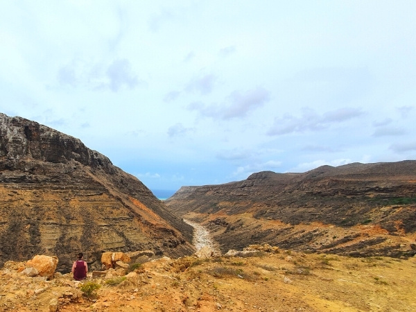 things you need to know before you visit Socotra