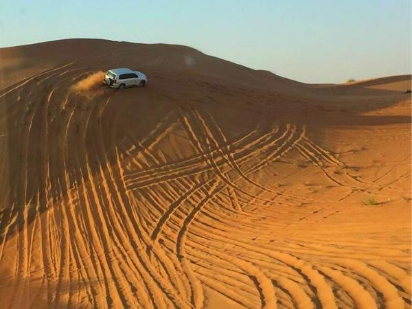 2-day Dubai itinerary - Dunebashing in the desert