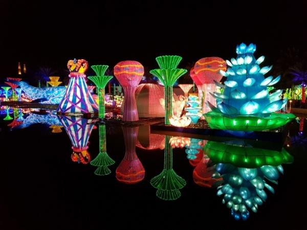 7-day Dubai itinerary Dubai Garden Glow