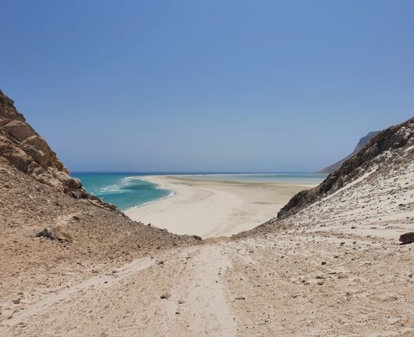 Stranded on Socotra - white sandy beach
