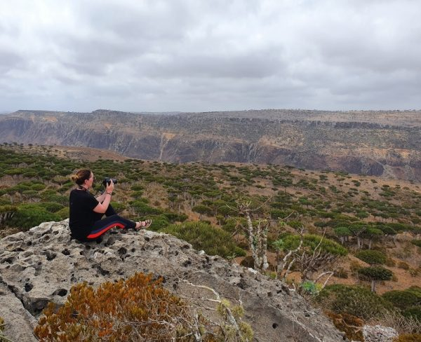 Stranded on Socotra - looking out over the Dragon Blood Forest